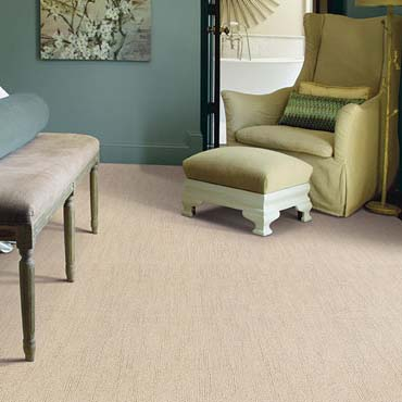Caress Carpet by Shaw | Phoenix, AZ